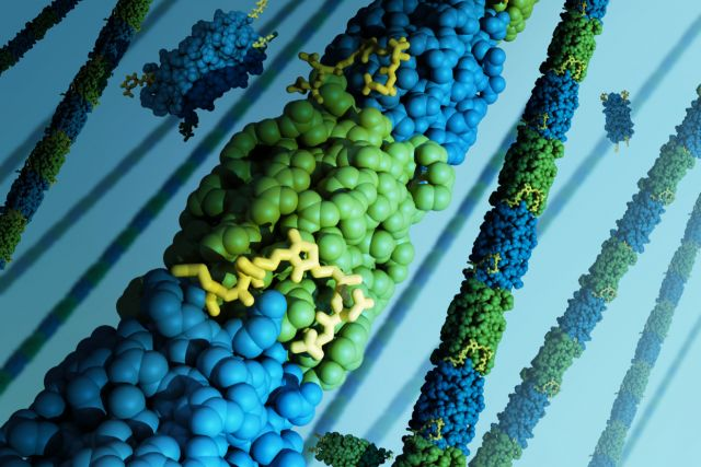 Customizable 'bundlemers' poised to become new material building blocks